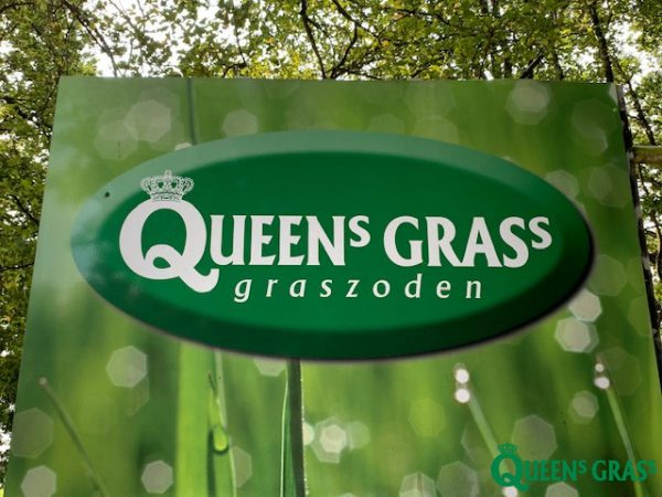 John Schmitz Hoveniers Assen - Queens Grass